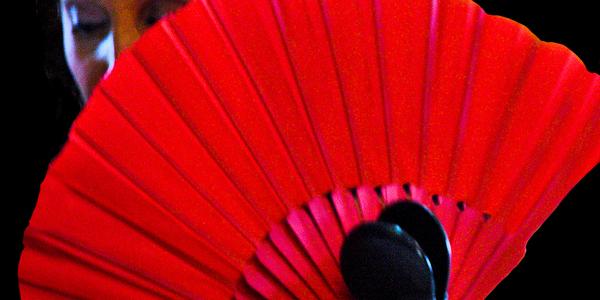Rectangle aire flamenco 2