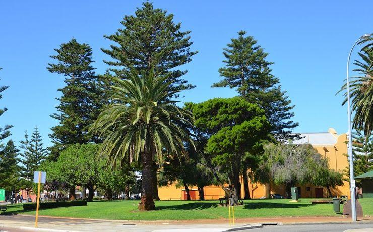 Scaled pioneer park